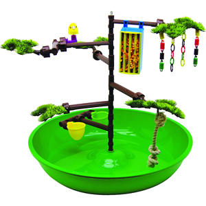 Desktop Activity Center for Pet Birds