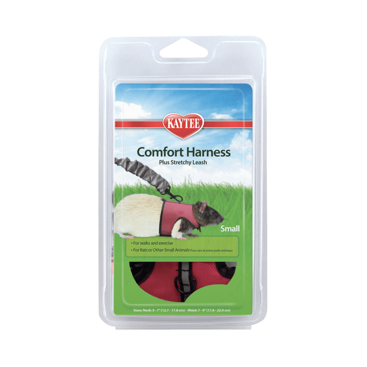 Comfort Harness & Stretchy Leash, Small