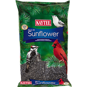 Wild Bird Black Oil Sunflower Seed