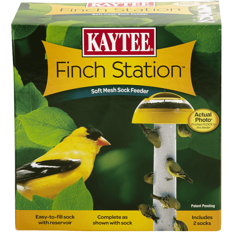 Finch Station and Sock Mesh Feeder