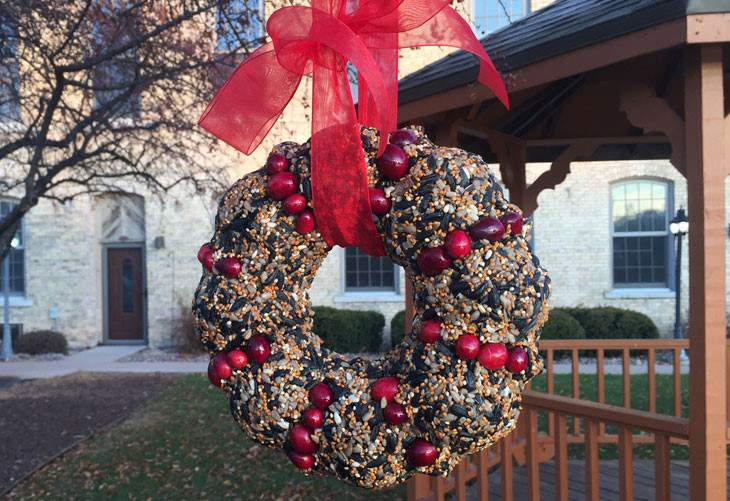 DIY Outdoor Holiday Bird Seed Wreath
