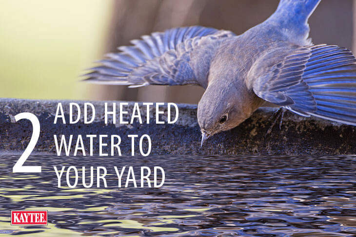 Add Heated Water to your Yard