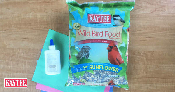 Kaytee Bird Food Crafts